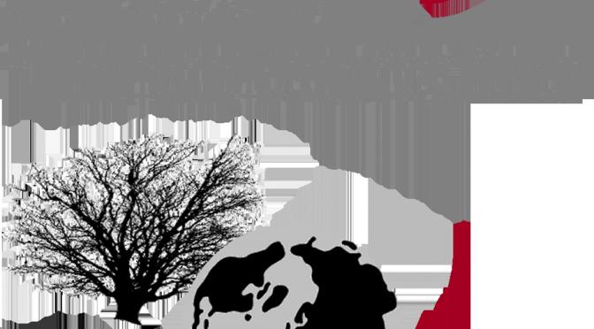 Anthraco2015, du 30 août au 6 septembre, Fribourg
